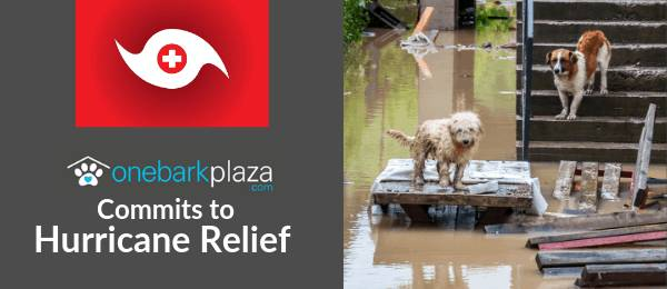 OneBarkPlaza: Animal Rescue through Hurricane Dorian Donations